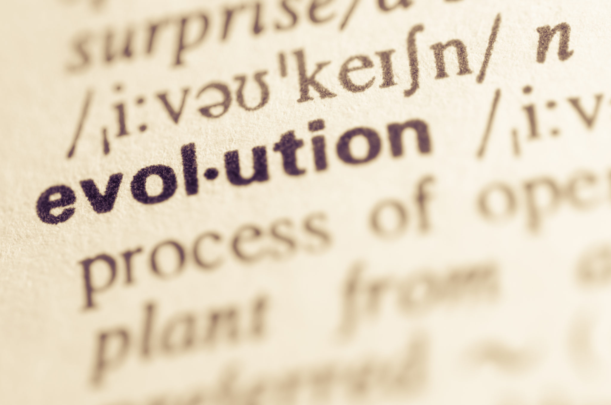 Definition,Of,Word,Evolution,In,Dictionary