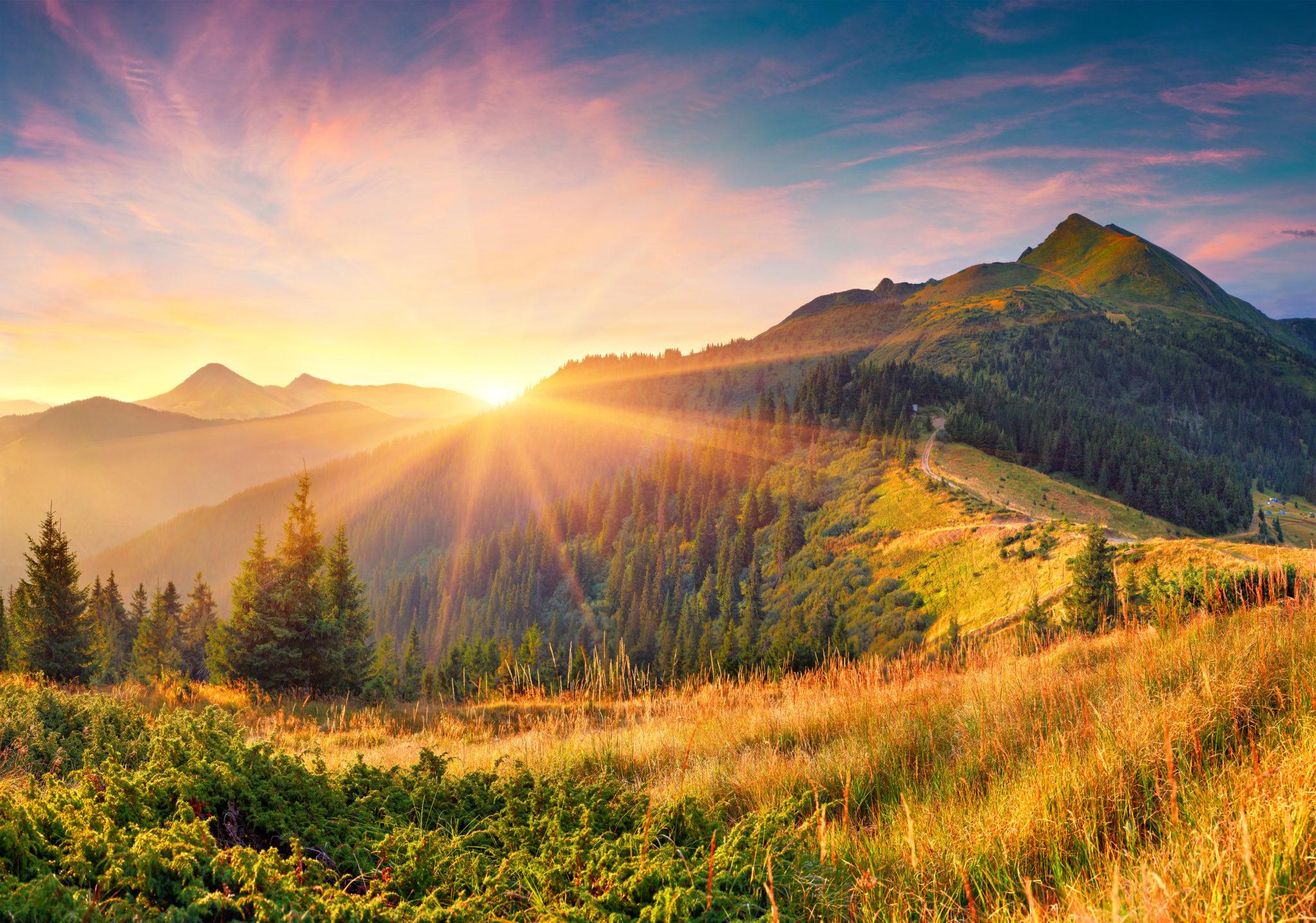 Amazing,Summer,Sunrise,In,Carpathian,Mountains.,Colorful,Morning,Scene,With
